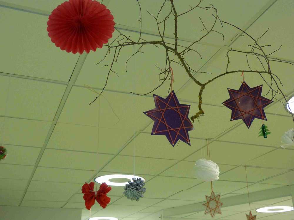 les étoiles de Noël